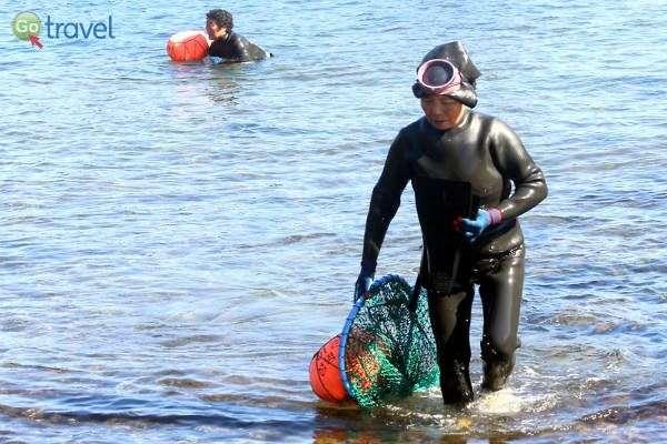 הנשים הצוללות שולות מזון מן הים (צילום: יובל נעמן)