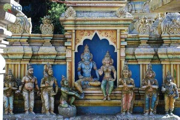 ריבוי אלים במקדשי סרי לנקה (צילום: ארנון רומן)