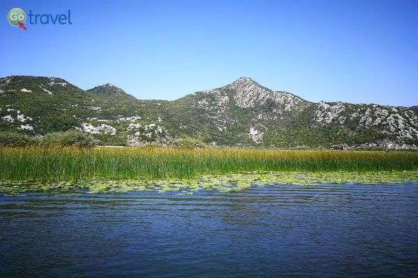 אגם סקדאר הוא בית גידול למאות מיני ציפרים (צילום: ירדן גור)