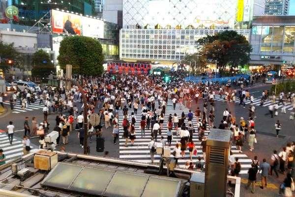 העיר טוקיו שוקקת חיים, קמה מחורבותיה והשתקמה (צילום: איריס לוין)