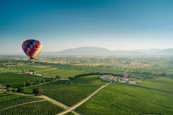 מבט מלמעלה על הכרמים באזור מוטנפלקו באומבריה (צילום: Arnaldo Caprai Winery)