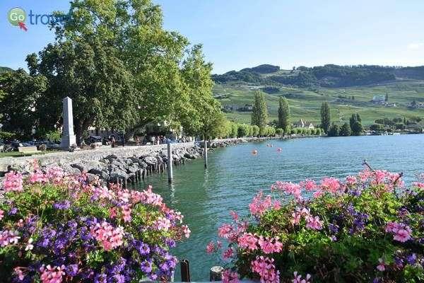שלווה על אגם ז'נבה  (צילום: כרמית וייס)