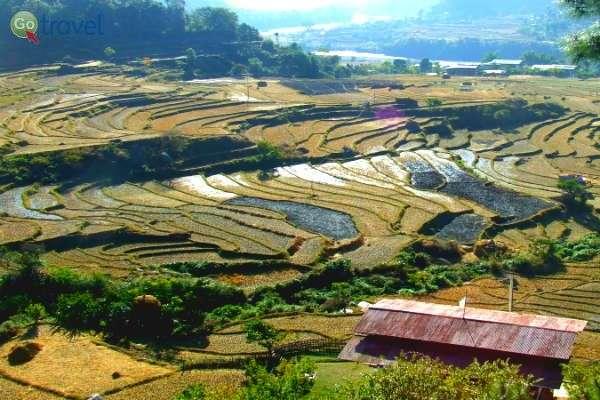 טרסות אורז בדרך לביקור במנזר (צילום: גלי ופרץ גלעדי)