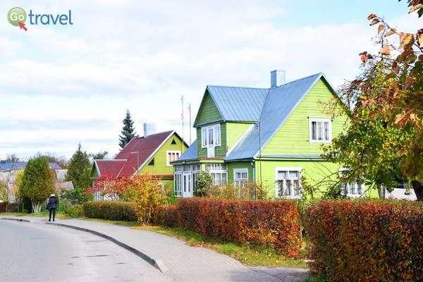 בתי עץ בצבעים ססגוניים  (צילום: כרמית וייס)