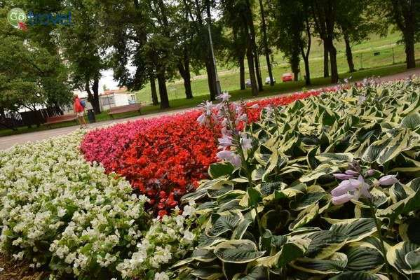 הגן למרגלות המבצר  (צילום: כרמית וייס)