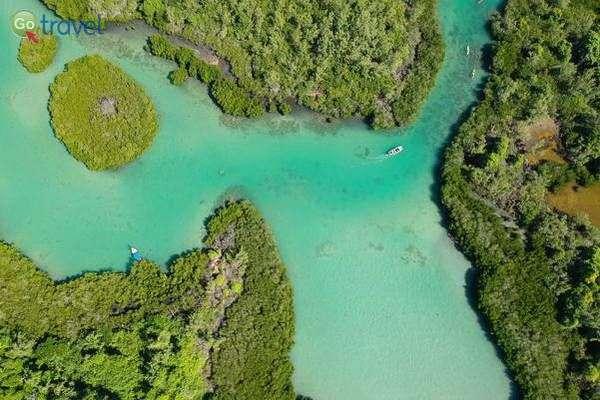 שייט קיאקים סביב האי  (צילום: עמית אופיר)