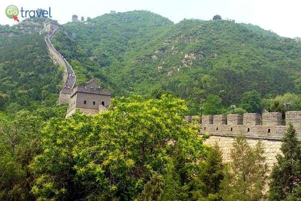 הנוף סביב החומה מוריק ומרהיב (צילום: יובל נעמן)