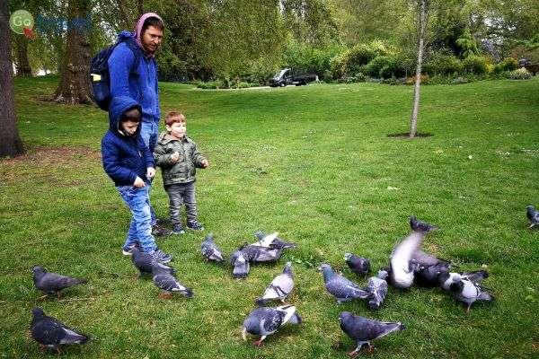 מאכילים ברווזים בפארק ריג'נטס (צילום: ירדן גור)