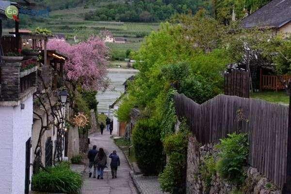 סמטאות העיירה הציורית דורנשטיין  (צילום: כרמית וייס)