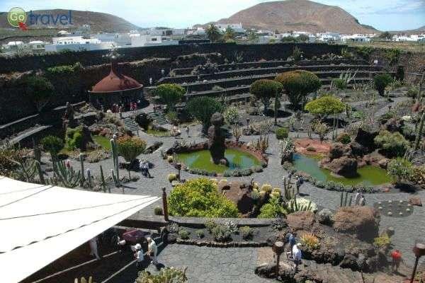 נופי האי על רקע גן הקקטוסים (צילום: רמי דברת)