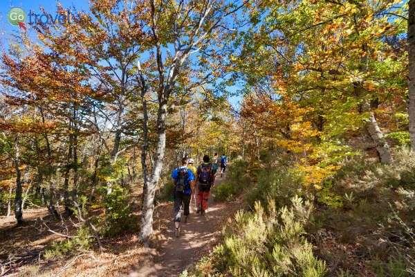 טבע מרהיב בחבל לה מנצ'ה (צילום: Turismo Castilla-La Mancha)