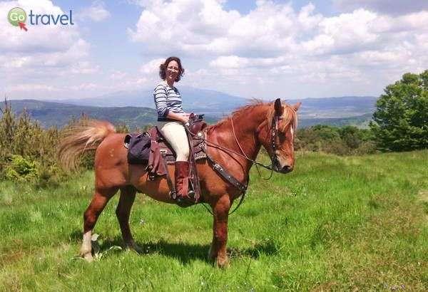 הכותבת והסוס הנאמן  (צילום: ענבל שדה)