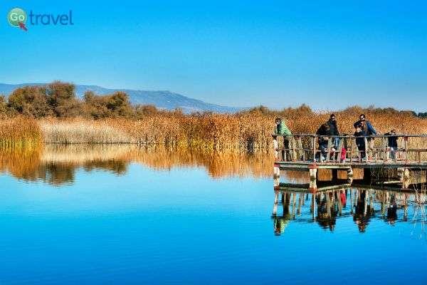 הפארק הלאומי טאבלאס דה דאימיאל (צילום: Turismo Castilla-La Mancha)