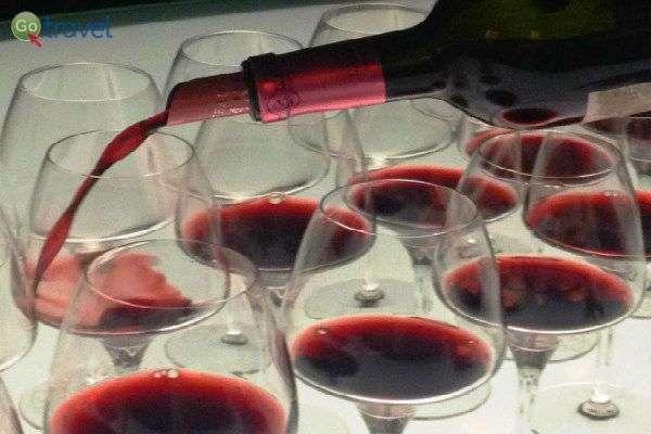 טעימת יינות בחבל בורדו (צילום: יעל הרמלין)