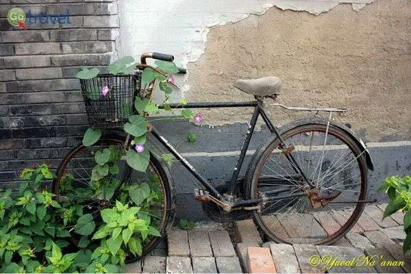 אופניים הם אמצעי תחבורה אהוב, נפוץ ויעיל (צילום: יובל נעמן)
