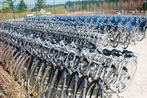 מאות זוגות אופניים מחכים לנופשים בכפר  (צילום: כרמית וייס)