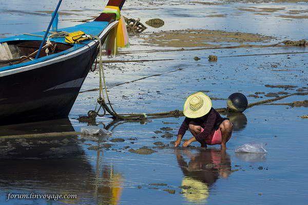 סירות הדייגים של חוף ראווי  (צילום: Phuket@photographer.net)