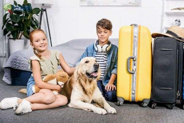 חיית המחמד היא חלק מהמשפחה - גם כשעוברים דירה (צילום באדיבות Pets2fly)