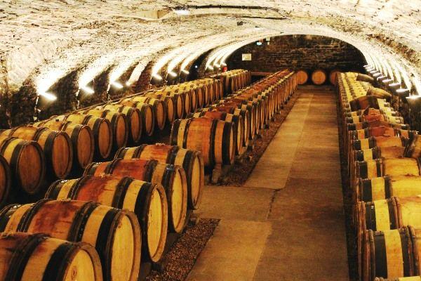 חביות במרתף של הוספיס דה בון (צילום: Claude Valette)
