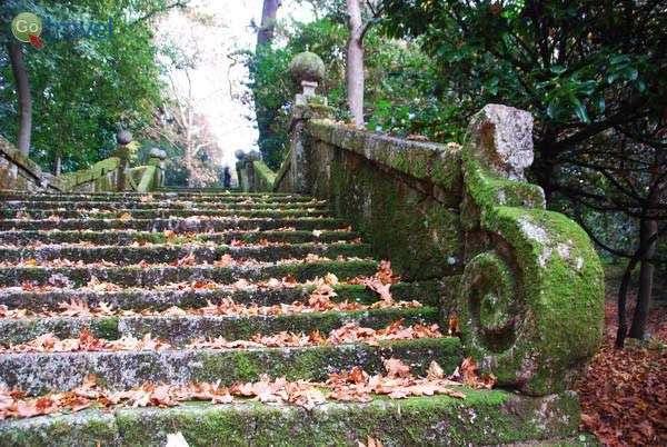 הגן בפוסדה סאנטה מארינה (צילום: כרמית וייס)