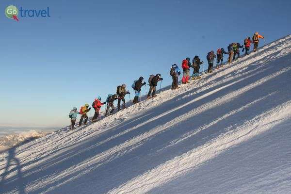 מטפסים כחול-לבן והרבה לבן  (צילום: חזי שקד)
