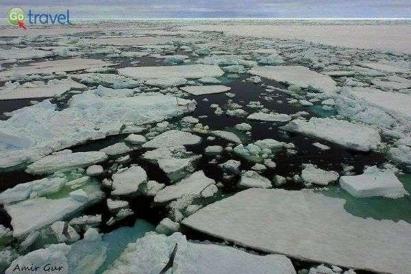 הספינות חזקות ועמידות לקרח (צילום: אמיר גור)