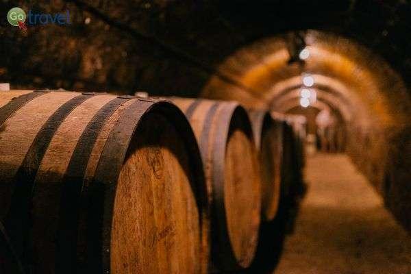חביות עץ אלון ובבטנן יין משובח (צילום: Rokusfalvy winery)