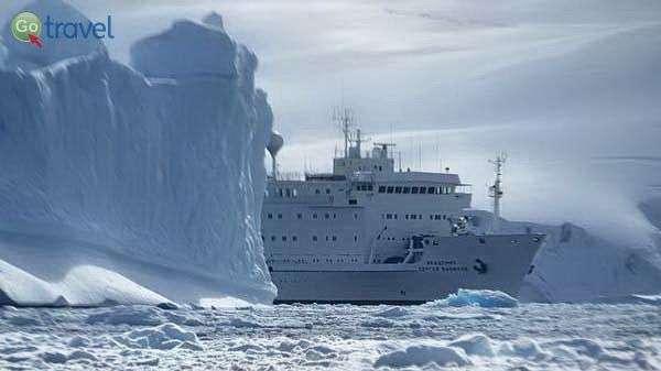 הפלגה לאנטארקטיקה  (צילום: אמיר גור)