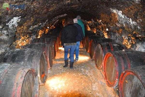 מרתף יין באזור טוקאי  (צילום: כרמית וייס)