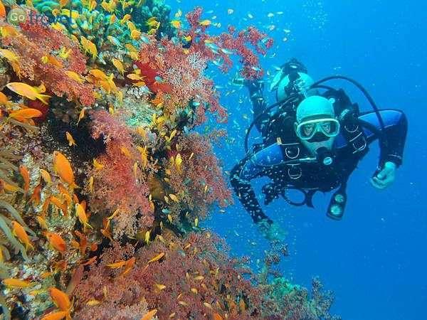צלילה בירדן (צילום: אמיר גור)