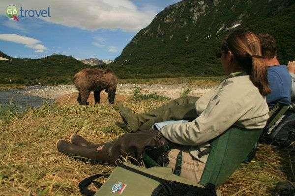 לאחר כמה שעות של צפייה בדובים שוכחים שפעם חיינו בלעדיהם... (צילום: עופר גלמונד)