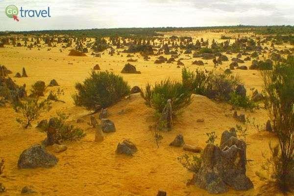 עמודי אבן חול  The Pinnacles  (צילום: יפעת סלע)