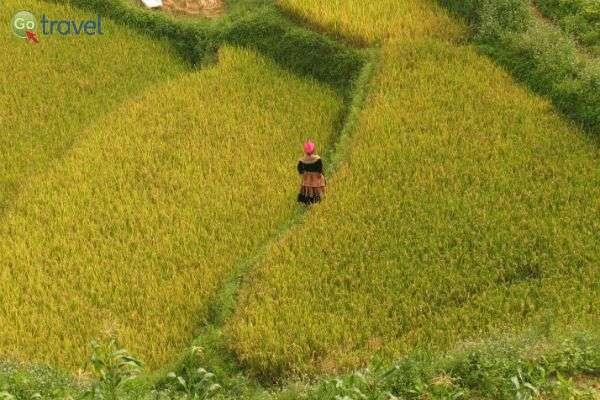 כפרים קטנים בווייטנאם (צילום: גולן לובנוב)