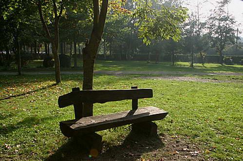 ספסל אל מול הנוף, כאילו מישהו חשב בדיוק עלינו