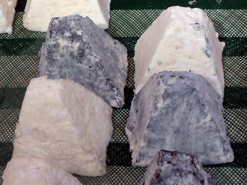 גבינת קבקו וגבינת פירמידה