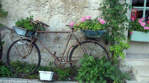 הצרפתים חובבי האופניים המושבעים