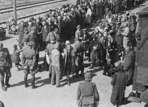 סלקציה של יהודי הונגריה שנשלחו לאושוויץ