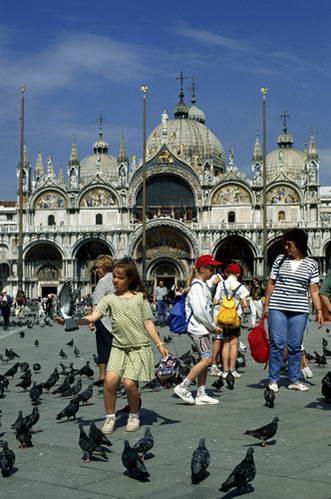 הבזילקיה והיונים בכיכר סן מרקו, ונציה
