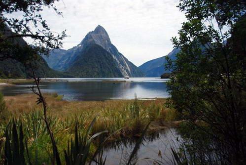 אזור הפיורדים של ניו זילנד