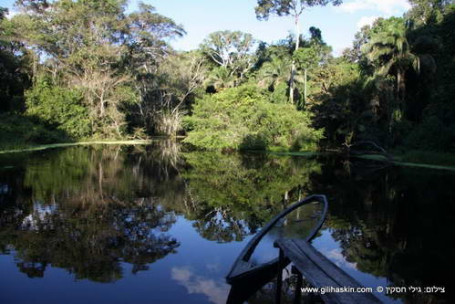 הסלווה של אגן האמזונס, פרו