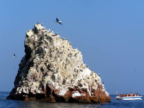 שייט בין איי בלסטס בשמורת פאראקס, גלאפגוס לעניים, פרו