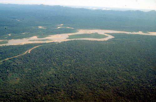 יער הגשם הטרופי, פרו