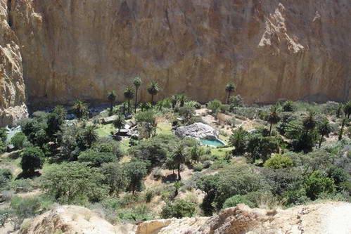 נווה המדבר בקניון קולקה בפרו