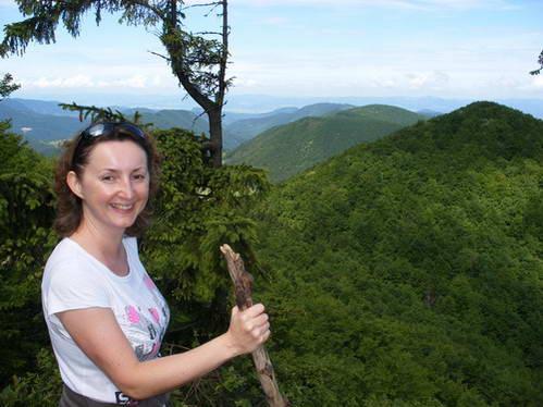תצפית צפונה על גבעות סטראז'וב - יערות, כרי דשא ועוד יערות