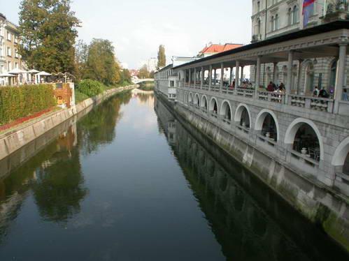 גשר העמודים בניצב לנהר ליובליאניצה
