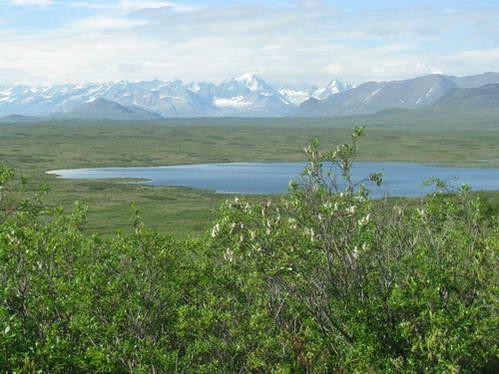 אגמים, רכסי הרים מושלגים וירוק מכל עבר