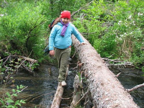 גל חוצה נחל על בול עץ בשבילי היער