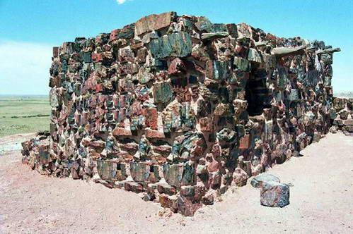 פטריפייד פורסט, אריזונה