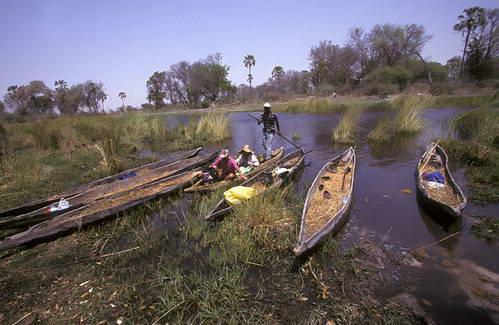 סירות מקורו על דלתת האוקוונגו