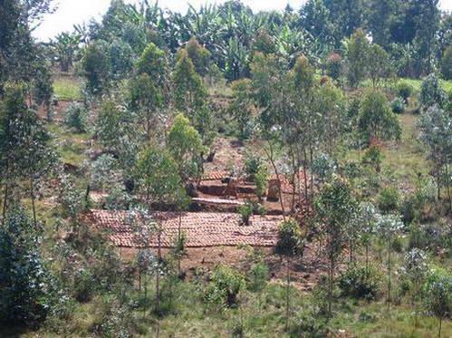 נוף חקלאי בבורונדי